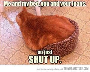 funny-fat-cat-bed